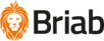 Briab-RGB_1000px